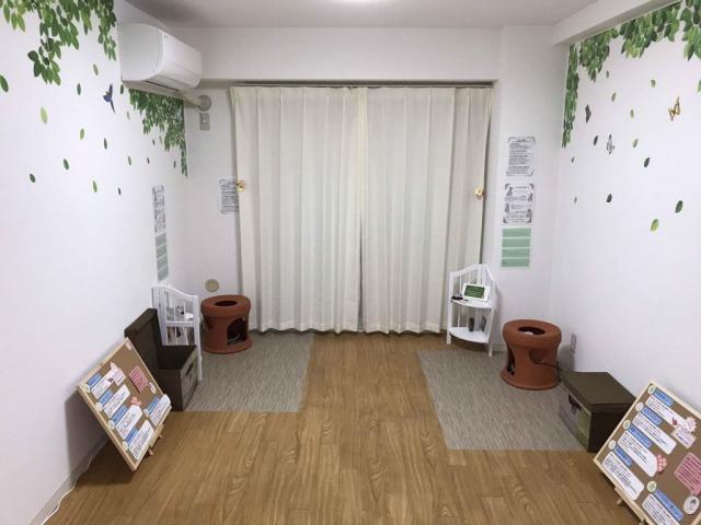 横浜の黄土よもぎ蒸し、店内